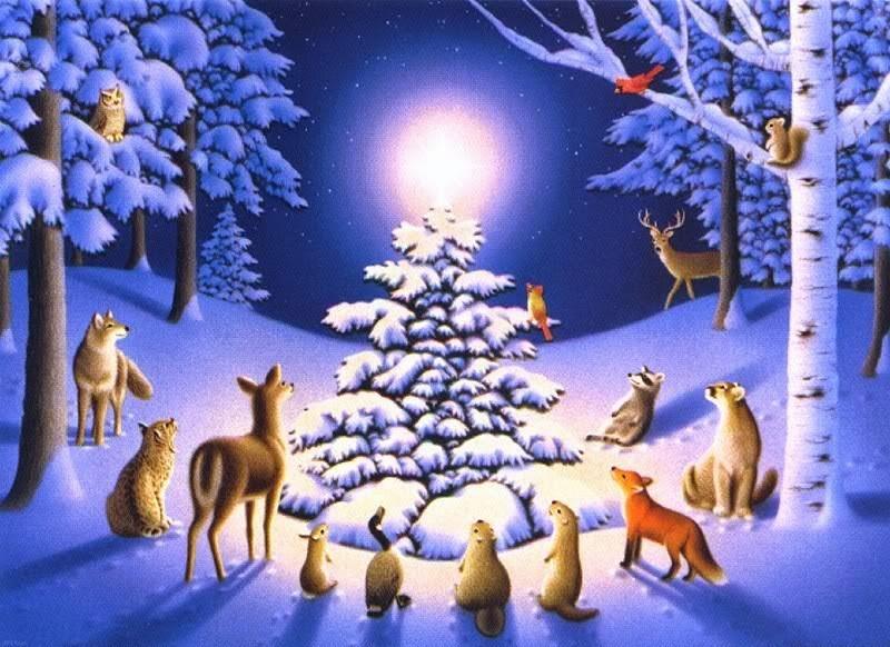 Lễ Giáng sinh này con giáp nào tình tiền đỏ thắm may mắn hết phần thiên hạ?