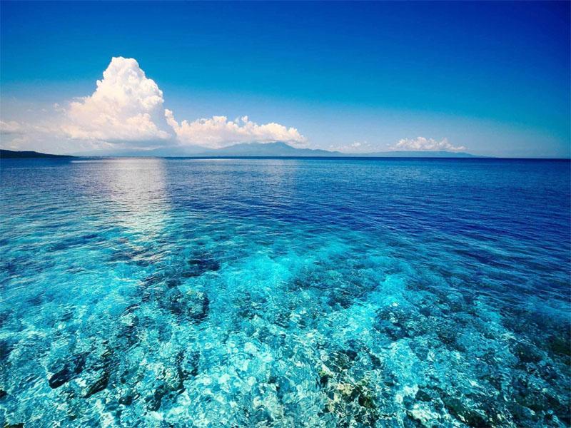 Bật mí điềm báo khi mơ thấy biển?