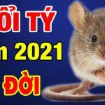 Tài lộc tuổi Tý 2021 – Thuận lợi suôn sẻ hay không?
